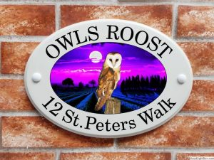 Barn owl house plaque