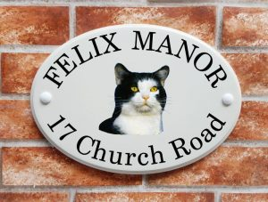 Black and white cat house sign