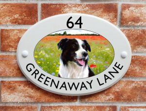 Border Collie dog house sign
