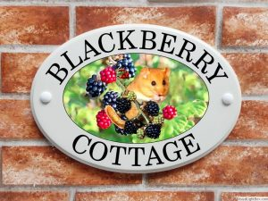 Dormouse with berries house sign