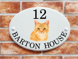 Ginger cat house plaque