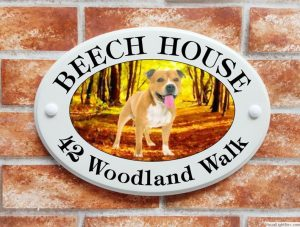 Staffordshire Bull Terrier dog house plaque