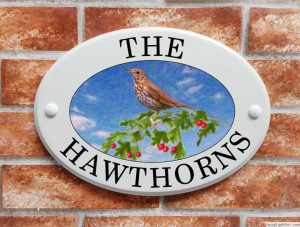Song thrush and hawthorns house plaque